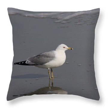Seaside Sentinel Throw Pillow