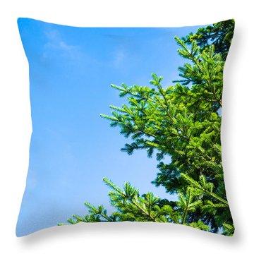 Season Greetings - Featured 3 Throw Pillow by Alexander Senin