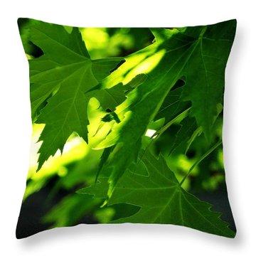 Season Leaves Throw Pillow