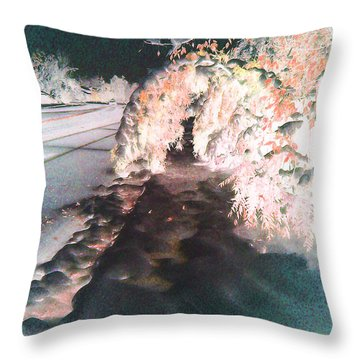 Seasonal Change Throw Pillow