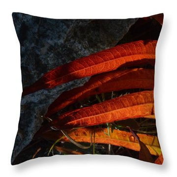 Seasonal Color Theory Throw Pillow by Brian Boyle