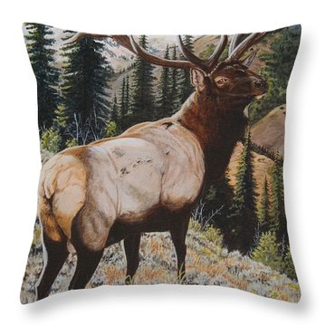 Seasoned Veteran Throw Pillow