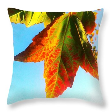 Throw Pillow featuring the photograph Season's Change by James Aiken