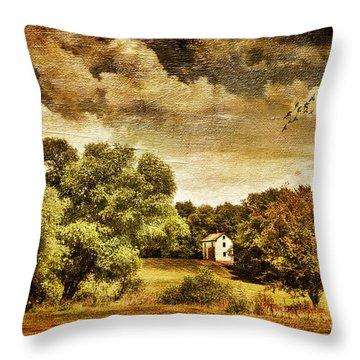 Seasons Change Throw Pillow by Lois Bryan