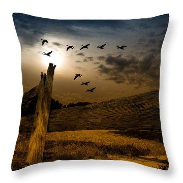 Seasons Of Change Throw Pillow by Bob Orsillo