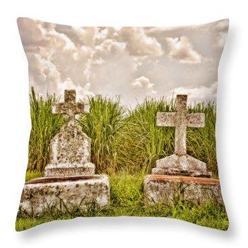 Seasons Of Life Throw Pillow by Scott Pellegrin