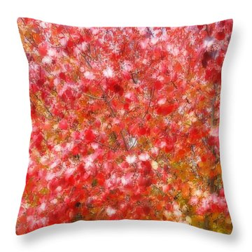 Seasons Throw Pillow by Peggy Stokes