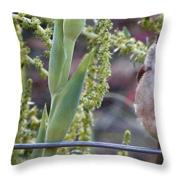Seattle Bird Throw Pillow
