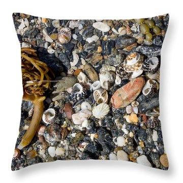 Seaweed And Shells Throw Pillow by Steven Ralser