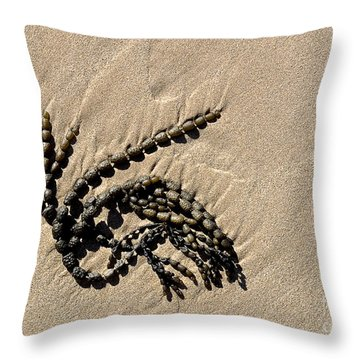 Seaweed On Beach Throw Pillow by Steven Ralser