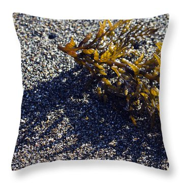 Seaweed Shadow Throw Pillow