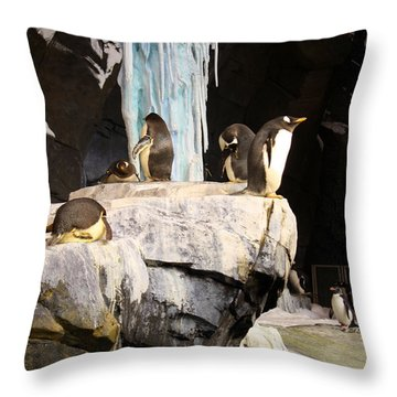 Seaworld Penguins Throw Pillow