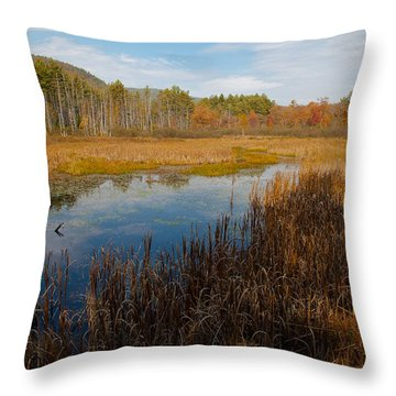 Secluded Adirondack Pond Throw Pillow by David Patterson