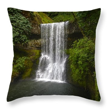 Secluded Falls Throw Pillow