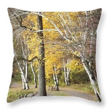 Secluded Lake Road Throw Pillow