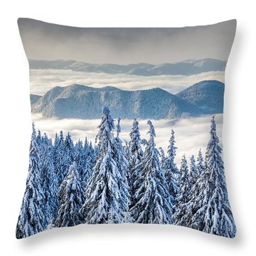 Second Level Throw Pillow by Evgeni Dinev