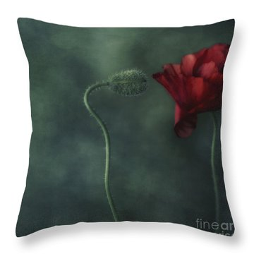 Secret Affair Throw Pillow by Priska Wettstein