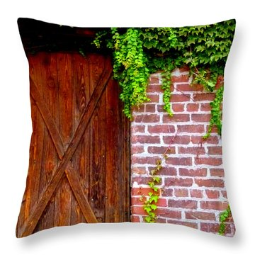Throw Pillow featuring the photograph Secret Door by Jeff Lowe