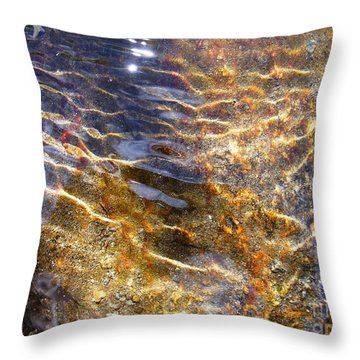 Secret Of Life Throw Pillow