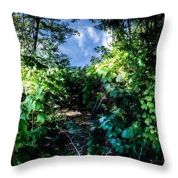 Secret Path Throw Pillow