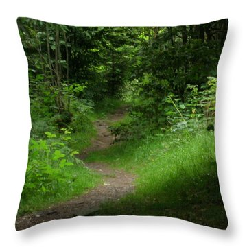 Throw Pillow featuring the photograph Secret Path by Kristen R Kennedy