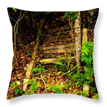 Throw Pillow featuring the photograph Secret Stairway by Bartz Johnson