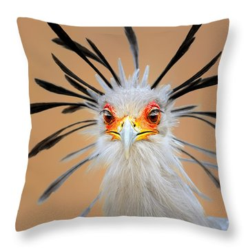 Secretary Bird Portrait Close-up Head Shot Throw Pillow
