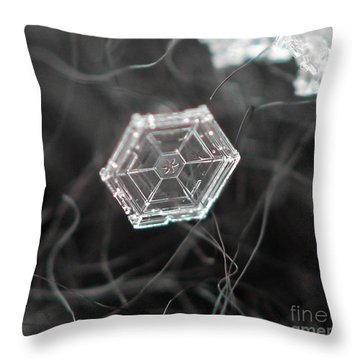 Sectored Plate Snowflake Throw Pillow