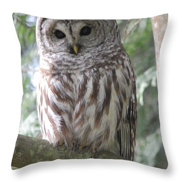 Security Cam Throw Pillow