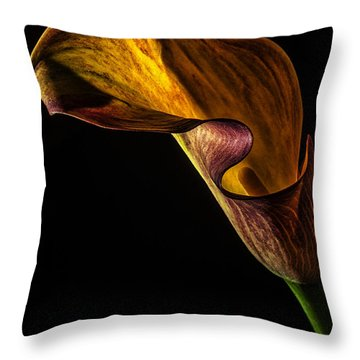 Throw Pillow featuring the photograph Seductress by Karen Slagle
