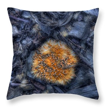 Seed Pod Throw Pillow by Tom Mc Nemar