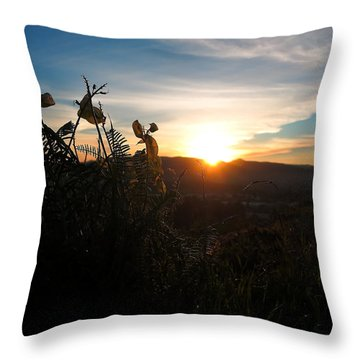 Seedpods At Sundown Throw Pillow by Paul Foutz