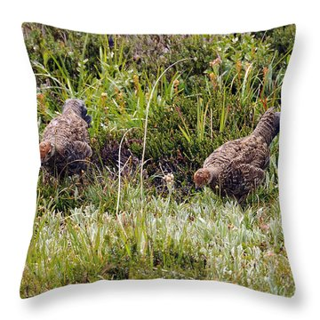 Throw Pillow featuring the photograph Seeing Double by Rebecca Parker