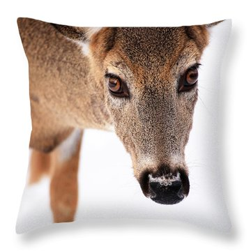 Seeing Into The Eyes Throw Pillow by Karol Livote