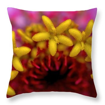Seeing Stars - Zinnia Throw Pillow