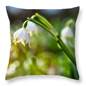 Throw Pillow featuring the photograph Seeing The Sun by Christine Sponchia