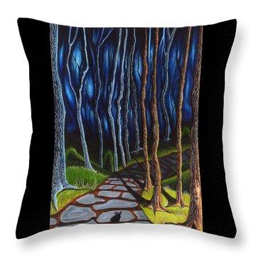 Seeking A Shadow  Throw Pillow