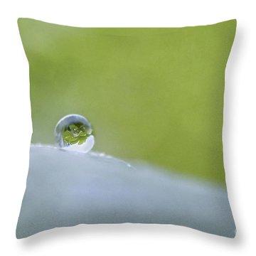 Seeking Balance Throw Pillow by Maria Ismanah Schulze-Vorberg