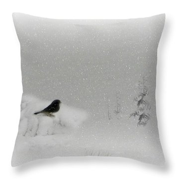 Seeking Shelter Throw Pillow