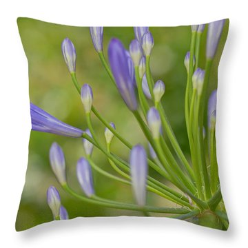 Seemingly Delicate Throw Pillow by Heidi Smith