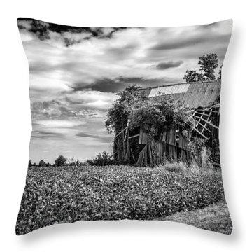 Seen Better Days Throw Pillow by Jeff Burton