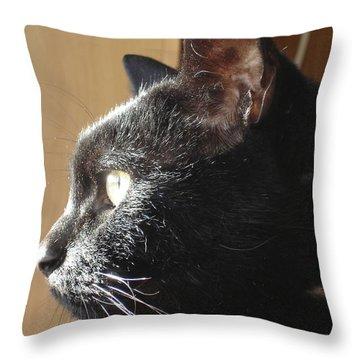 Throw Pillow featuring the photograph Seesa by Kerri Mortenson