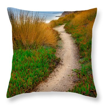 Seixo Trail Throw Pillow by Edgar Laureano