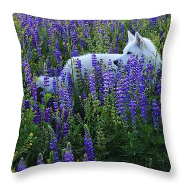 Sekani In Lupine Throw Pillow
