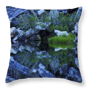 Sekani Wild Throw Pillow
