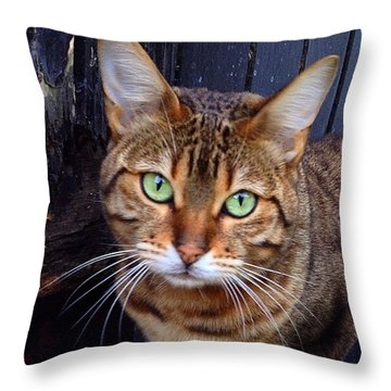 Miou Throw Pillow