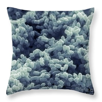 Sem Of Escherichia Coli Throw Pillow