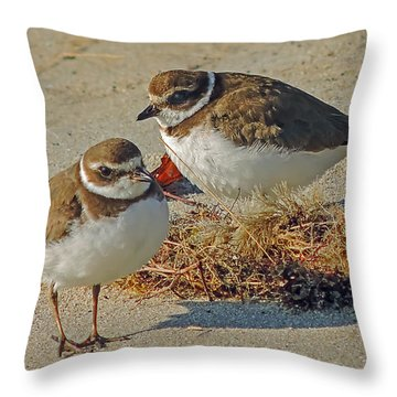 Semi-palmated Plovers Throw Pillow