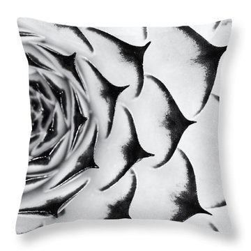 Sempervivum Pattern Monochrome Throw Pillow