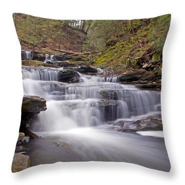Seneca Falls In Spring Throw Pillow by Shelly Gunderson